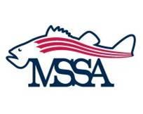MD_SSA_logo